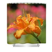 Blooming In August Shower Curtain