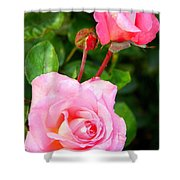 Blooming In Phases Shower Curtain