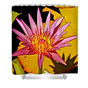 Blooming Lotus Flower Shower Curtain