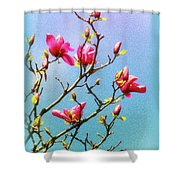 Blooming Magnolia Shower Curtain