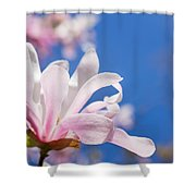 Blooming Magnolia Flower Shower Curtain