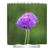 Blooming Onion Chives Shower Curtain