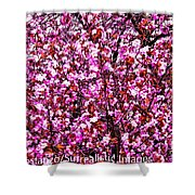 Blooming Pink Shower Curtain