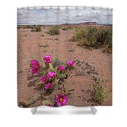Blooming Prickley Pear Shower Curtain