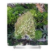 Blooming Succulent Plant. Amazing Shower Curtain
