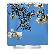 Blooming Trees Art Print White Magnolia Flowers Baslee Troutman Shower Curtain