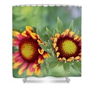 Blooms Of Color Shower Curtain
