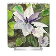 Blossom At Sundy House Shower Curtain