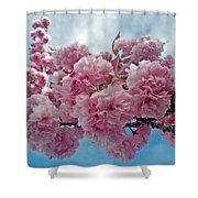 Blossom Bliss Shower Curtain