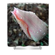 Blossom Drops Shower Curtain