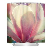 Blossom Flares Shower Curtain by Louis Rivera