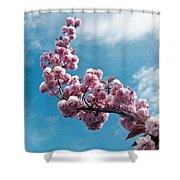 Blossom Impressions Shower Curtain