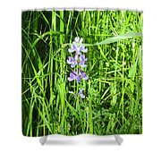 Blossom In The Grass Shower Curtain