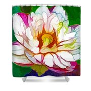 Blossom Lotus Flower Shower Curtain