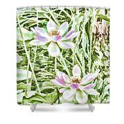Blossom Pink Lotus Flower Shower Curtain