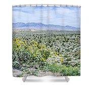 Blossom Time Shower Curtain