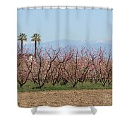 Blossom Trail 1 Shower Curtain
