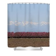 Blossom Trail 2 Shower Curtain