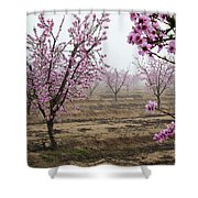 Blossom Trail Shower Curtain