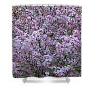 Blossom Tree Shower Curtain