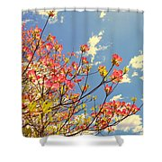Blossoms Against The Sky Shower Curtain