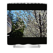 Blossoms And The Bard Shower Curtain
