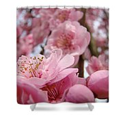 Blossoms Art Print Pink Spring Blossom Baslee Troutman Shower Curtain