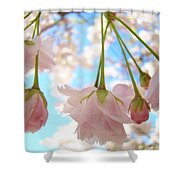 Blossoms Art Prints 52 Pink Tree Blossoms Nature Art Blue Sky Shower Curtain