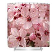 Blossoms Art Prints 63 Pink Blossoms Spring Tree Blossoms Shower Curtain
