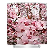 Blossoms Art Spring Pink Tree Blossom Floral Baslee Troutman Shower Curtain