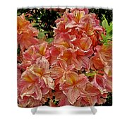 Blossoms In A Summer Shower Shower Curtain