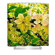 Blossoms Of Sunshine Shower Curtain