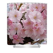 Blossoms On Bark Shower Curtain