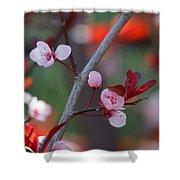 Blossoms Petite Shower Curtain