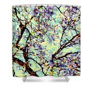 Blossoms Up Shower Curtain