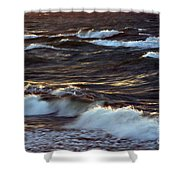 Blowing In The Wind 2 Shower Curtain