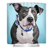 Blu 2 Shower Curtain