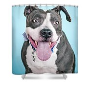 Blu 4 Shower Curtain