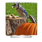 Blu Goes Nuts Shower Curtain
