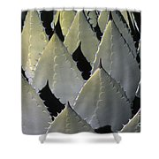Blue Agave Cactus Shower Curtain