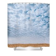 Blue And Amber Shower Curtain