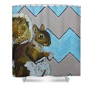 Blue And Beige Chevron Squirrel Shower Curtain