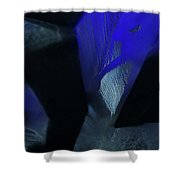 Blue And Black No. 1 Shower Curtain