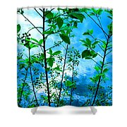 Nature's Gifts Of Blue And Green Shower Curtain