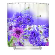 Blue And Violet Cornflowers Shower Curtain