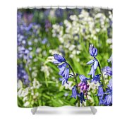 Blue And White Hyacinth Flowers Shower Curtain