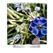 Blue Anemone Shower Curtain