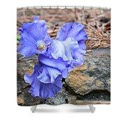 Blue Angel - Iris Shower Curtain