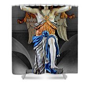 Blue Angel Two Shower Curtain