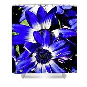 Blue Beauties Shower Curtain